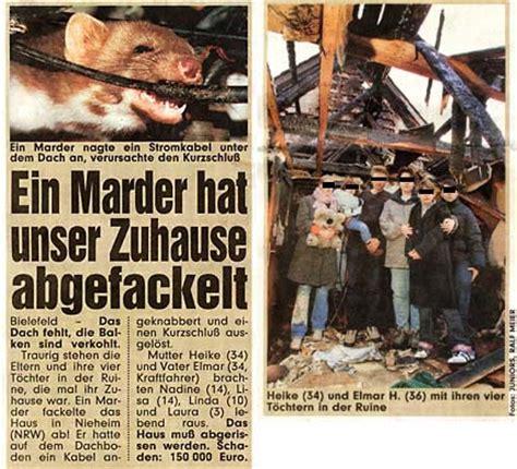 Marder Vom Dachboden Vertreiben 4437 by Marder Marderschutz Marderabwehr Marderschreck Marderfalle