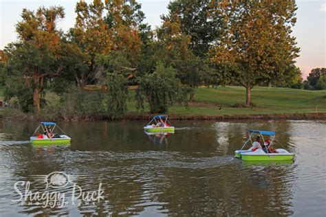 paddle boat rental lake murray pedal boat rental business plan
