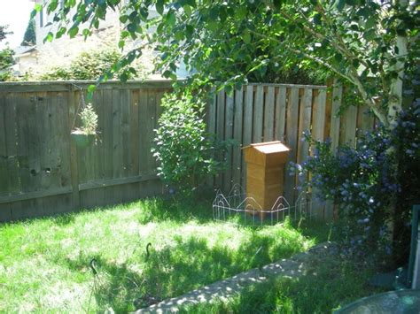 A Beehive In Your Backyard by Brenden S Warre Hive The Bee Space