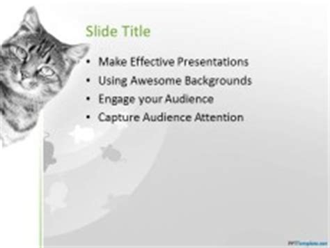 cat powerpoint template free cat ppt template