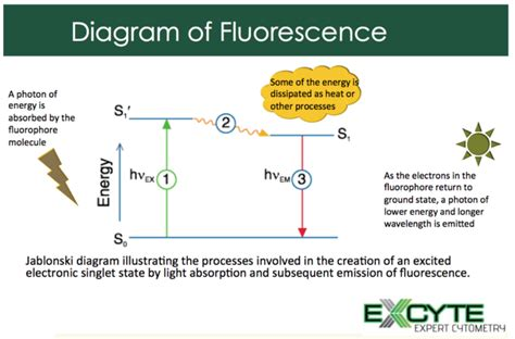 diagram explained understanding the jablonski diagram will help you publish