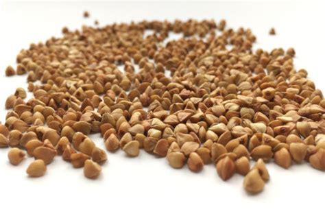 cucinare il grano saraceno grano saraceno propriet 224 e ricette di cucina tuttogreen