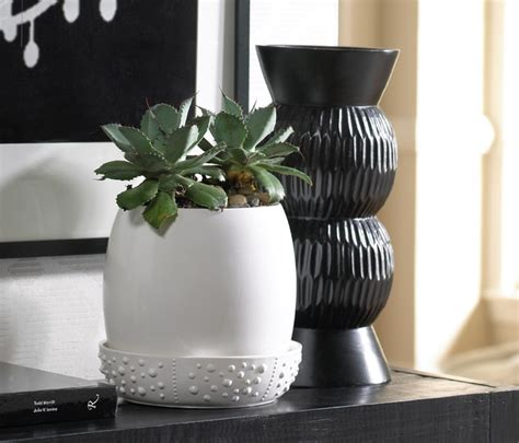indoor ceramic planters low tide indoor ceramic planter contemporary indoor pots and planters by chuckle farm