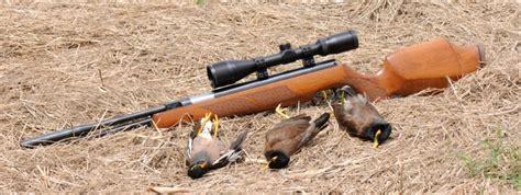 best air best air rifle gun and scope reviews