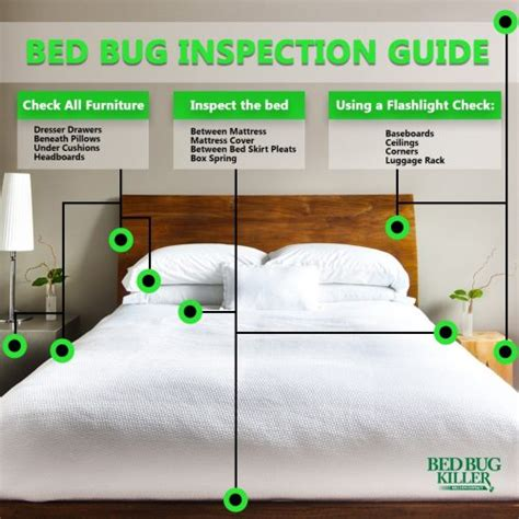 what to look for when buying a mattress don t bring home these guests when traveling