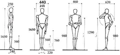 mejorar oscilacion vertical medidas antropom 233 tricas t 233 cnica scout