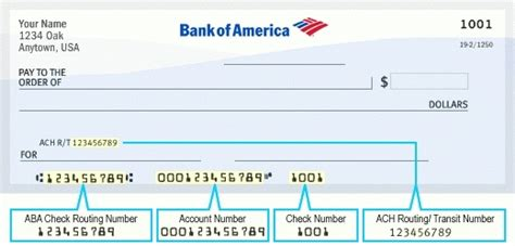 nbt bank number bank of america routing and account numberfreedomfreerun