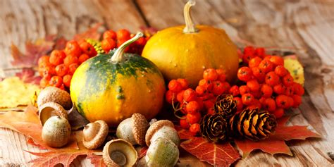 In Fall the best fall food a huffpost deathmatch vote huffpost