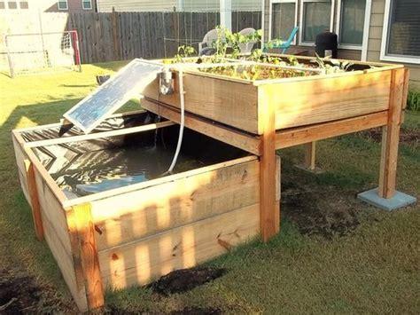 backyard aquaponics system  renewable diy kickstarter