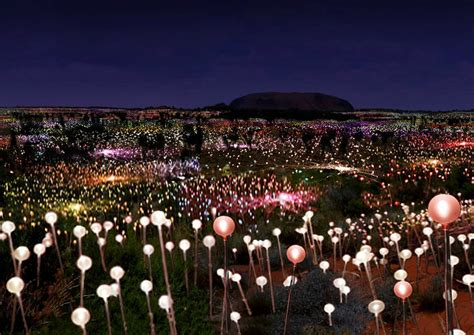 a at field of light gallery of bruce munro announces plans for solar powered