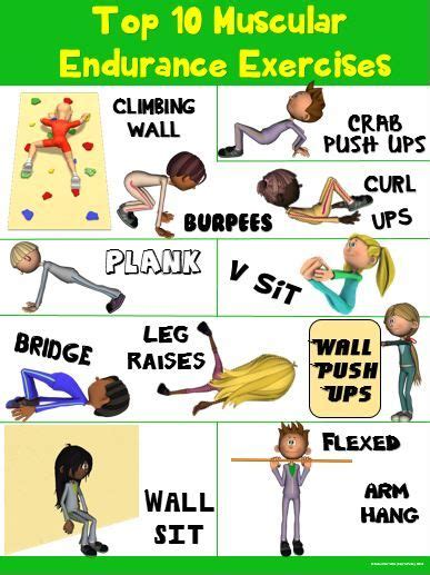 pe poster top 10 muscular endurance exercises hold on