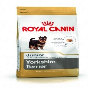royal canin food for yorkies royal canin food 1 5kg