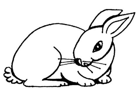 simple rabbit coloring page get this easy rabbit coloring pages for preschoolers 8ps18