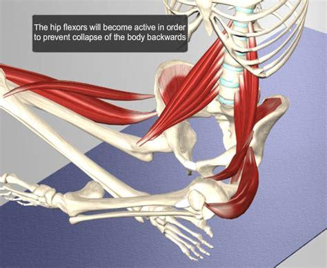 soma system releasing myofascial restriction  yoga tfl