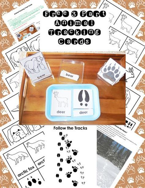 printable montessori pdf 32 best images about free montessori inspired pdfs by wof