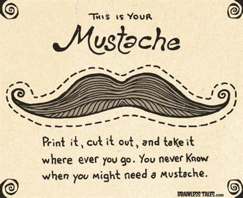 mustache bedroom mustache cheyanne