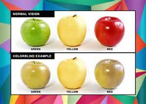 Glasses For Color Blind 色覚異常補助 赤色弱 緑色弱 コンタクトレンズ