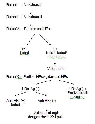 Obat Urdafalk sikkahoder mengenal penyebab dan pengobatan hepatitis b