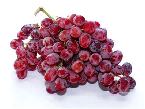 imagenes uvas rojas uvas rojas sin semillas libra freshboxpty llevamos