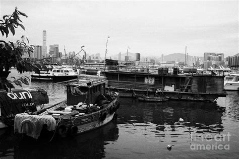 houseboats hong kong old houseboats and working boats in causeway bay typhoon