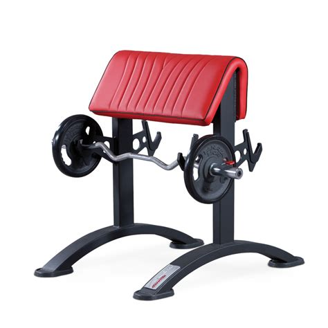 bench curl standing curl bench