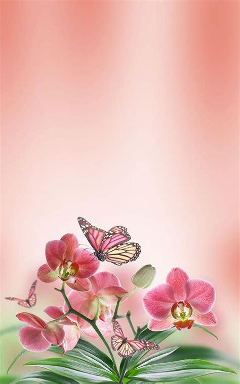 imagenes de mariposas bonitas y fondos de pantalla de mariposa fondo animado aplicaciones de android en google