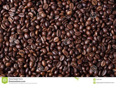 Black Coffee Robusta Roasted robusta coffee beans stock image image of brown roasted 34437951