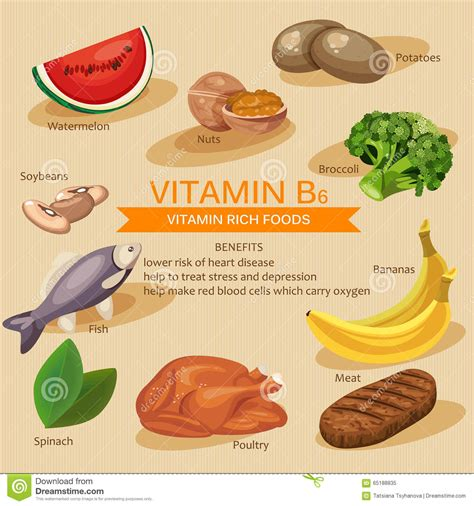 fruit b vitamins vitamins and minerals foods illustration vector set of