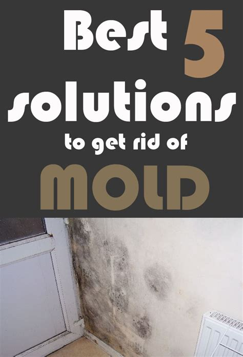 how to get rid of mold in car upholstery 1000 images about cleaning on pinterest stains uses