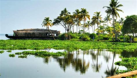 amazing     kerala  traveltriangle