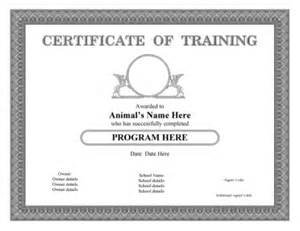 service dog certificate template pet certificate templates for dogs cats horses and other doc 585580 sample certificate of service template