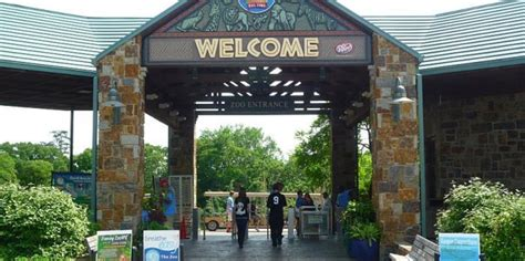 Garden City Zoo Animals Top 10 Best Zoos In The Us News