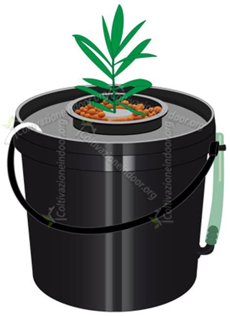 vaso idroponico coltivazione indoor e idroponica
