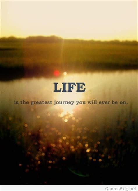 life quotes  messages