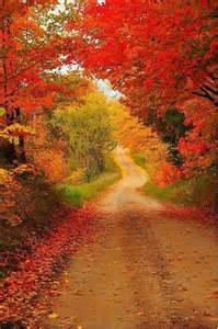 beautiful fall colors autumn