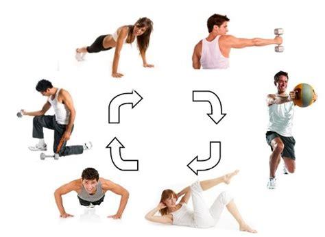 circuit training circuit training workouts medifit biologicals circuit training
