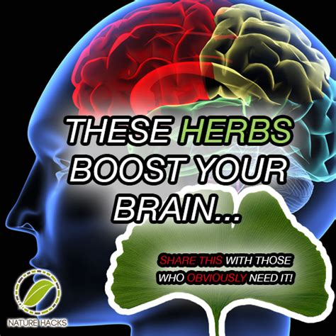 memory rescue supercharge your brain memory loss and remember what matters most books quot enhance quot search mims philippines mind power boost