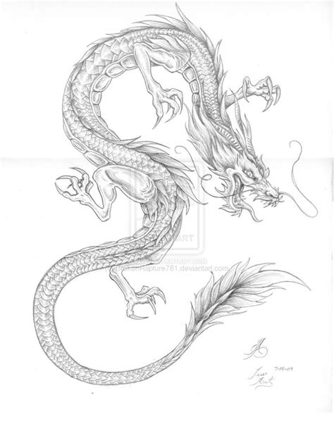 tattoo sketch dragon 26 best japanese dragon tattoo stencil images on pinterest