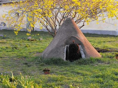 Canine Hobbit Homes The All Natural Diy Dog House By Fibrillaria Made Of Straw Manure