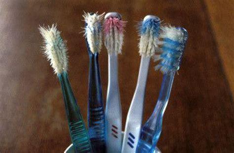Harga Tempat Sikat Gigi Dari Barang Bekas by 6 Kegunaan Sikat Gigi Bekas Untuk Bersih Bersih