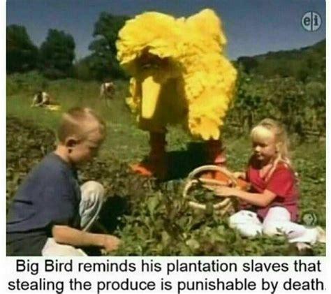 big memes the best big bird memes memedroid