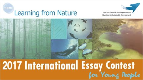 Goi Peace Essay by Goi Peace Foundation International Essay Contest Opportunity Desk