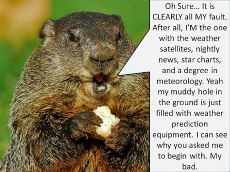 groundhog day quotes nancy groundhog