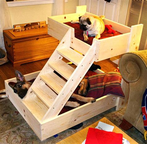 dog bunk beds for sale beds wooden dog beds plans raised bed wood pet dogs for