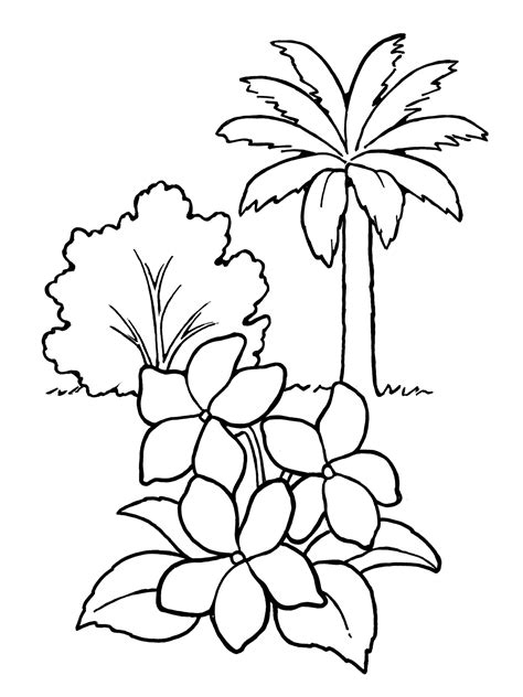 coloring pictures of flowers and trees plants and trees