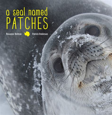 a seal named patches books a seal named patches by roxanne robinson slj