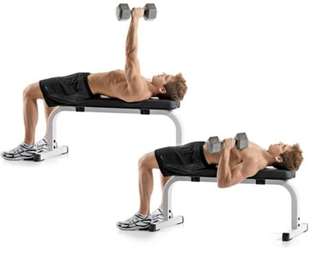 single arm dumbell bench press definindo o abd 244 men os 7 melhores exerc 237 cios para