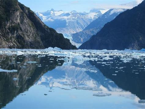 fjord water ice mountains water and sky picture of tracy arm