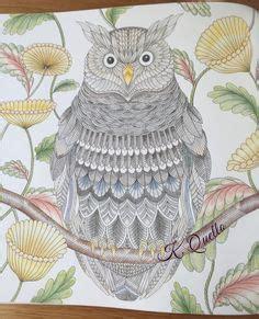 willow s world coloring book owls books pin by yana pshevoznitskaya on millie marotta 2