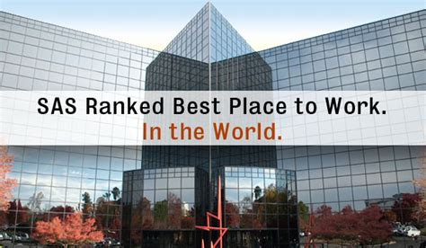 best place to work in world sas ranked best place to work in the world carycitizen